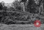 Image of jungle warfare training Canungra Australia, 1943, second 8 stock footage video 65675038652