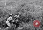 Image of jungle warfare training Canungra Australia, 1943, second 7 stock footage video 65675038653
