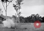Image of jungle warfare training Canungra Australia, 1943, second 9 stock footage video 65675038653
