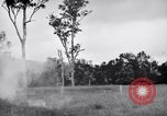 Image of jungle warfare training Canungra Australia, 1943, second 10 stock footage video 65675038653