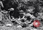 Image of jungle warfare training Canungra Australia, 1943, second 11 stock footage video 65675038653