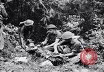 Image of jungle warfare training Canungra Australia, 1943, second 12 stock footage video 65675038653