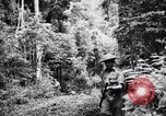 Image of jungle warfare training Canungra Australia, 1943, second 1 stock footage video 65675038654