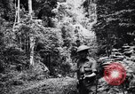 Image of jungle warfare training Canungra Australia, 1943, second 2 stock footage video 65675038654
