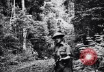 Image of jungle warfare training Canungra Australia, 1943, second 3 stock footage video 65675038654