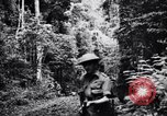 Image of jungle warfare training Canungra Australia, 1943, second 4 stock footage video 65675038654