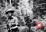 Image of jungle warfare training Canungra Australia, 1943, second 6 stock footage video 65675038654