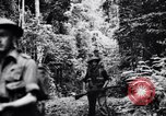 Image of jungle warfare training Canungra Australia, 1943, second 7 stock footage video 65675038654