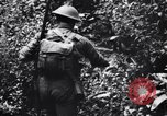 Image of jungle warfare training Canungra Australia, 1943, second 9 stock footage video 65675038654
