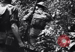 Image of jungle warfare training Canungra Australia, 1943, second 10 stock footage video 65675038654