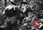 Image of jungle warfare training Canungra Australia, 1943, second 11 stock footage video 65675038654