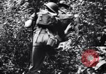Image of jungle warfare training Canungra Australia, 1943, second 12 stock footage video 65675038654