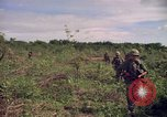 Image of 25th Infantry Division Cuchi South Vietnam, 1966, second 11 stock footage video 65675038722
