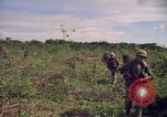 Image of 25th Infantry Division Cuchi South Vietnam, 1966, second 12 stock footage video 65675038722
