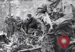 Image of German Infantry operating in marshes in Winter Ukraine, 1944, second 11 stock footage video 65675038829