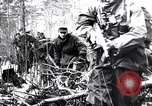 Image of Pripet Marshes Ukraine, 1944, second 11 stock footage video 65675038844