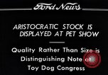 Image of pet show Detroit Michigan USA, 1934, second 5 stock footage video 65675038941