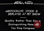 Image of pet show Detroit Michigan USA, 1934, second 8 stock footage video 65675038941