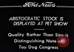 Image of pet show Detroit Michigan USA, 1934, second 10 stock footage video 65675038941