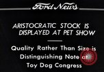 Image of pet show Detroit Michigan USA, 1934, second 11 stock footage video 65675038941