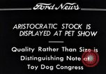 Image of pet show Detroit Michigan USA, 1934, second 12 stock footage video 65675038941