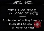 Image of Turtle race Detroit Michigan USA, 1934, second 6 stock footage video 65675038945