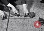 Image of Turtle race Detroit Michigan USA, 1934, second 11 stock footage video 65675038945