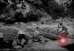 Image of Engineers Palestine, 1945, second 1 stock footage video 65675039005