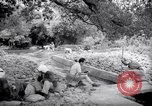 Image of Engineers Palestine, 1945, second 5 stock footage video 65675039005