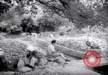 Image of Engineers Palestine, 1945, second 12 stock footage video 65675039005