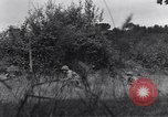 Image of United States Army 119th Infantry soldiers Mortain France, 1944, second 5 stock footage video 65675039023