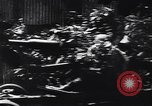 Image of German infantry Normandy France, 1944, second 9 stock footage video 65675039049