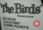 Image of Tippi Hedren Albany New York USA, 1963, second 7 stock footage video 65675039099