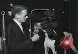 Image of Westminster Kennel Club Dog Show event New York United States USA, 1963, second 11 stock footage video 65675039116