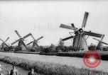 Image of windmills Kinderdijk Holland, 1963, second 3 stock footage video 65675039179