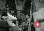 Image of preparation for Carnival of Viareggio Italy, 1960, second 7 stock footage video 65675039455