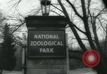 Image of National Zoological Park Washington DC USA, 1960, second 4 stock footage video 65675039457