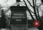 Image of National Zoological Park Washington DC USA, 1960, second 5 stock footage video 65675039457