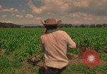 Image of farmer Mexico, 1975, second 5 stock footage video 65675039461