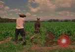 Image of farmer Mexico, 1975, second 7 stock footage video 65675039461