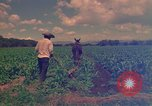 Image of farmer Mexico, 1975, second 8 stock footage video 65675039461