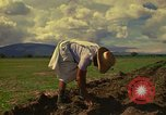 Image of farmer Mexico, 1975, second 3 stock footage video 65675039462