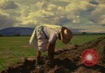 Image of farmer Mexico, 1975, second 4 stock footage video 65675039462