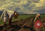 Image of farmer Mexico, 1975, second 6 stock footage video 65675039462