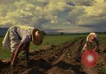 Image of farmer Mexico, 1975, second 7 stock footage video 65675039462