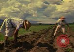 Image of farmer Mexico, 1975, second 10 stock footage video 65675039462