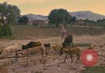 Image of man Mexico, 1975, second 3 stock footage video 65675039467