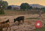 Image of man Mexico, 1975, second 7 stock footage video 65675039467