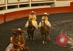 Image of horses Mexico City Mexico, 1975, second 6 stock footage video 65675039477