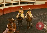 Image of horses Mexico City Mexico, 1975, second 7 stock footage video 65675039477